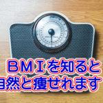 BMIを知り、痩せる力を引き出す方法!リバウンドも避けれます!