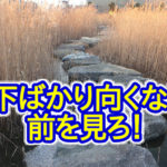 石橋を叩いて渡る生き方は、逃げかもしれません!未来を見よう!
